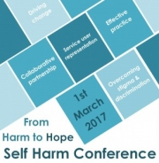 Self Harm Conference, From Harm to Hope